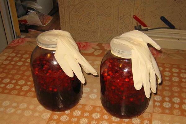 Как приготовить из забродившего компота вино в домашних условиях 915
