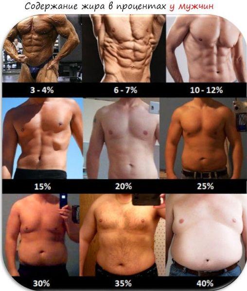Определение процента жира в организме калькулятор