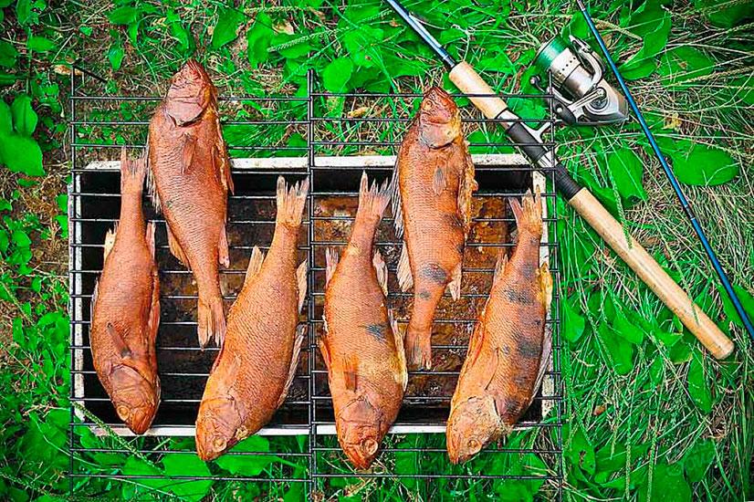 Как коптить рыбу своими руками 395