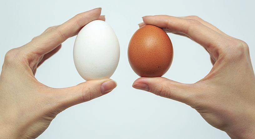 Bir Kağıt Peçete Ile Yumurta Boyama Paskalya Için Kendi Elleriyle