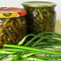 Salatalık turşusu için tarifler veya geleneksel bir Rus atıştırması nasıl hazırlanır 36